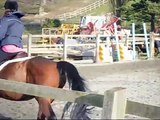 Cantering, Jumping and Bounce Jumps.