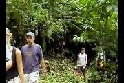 Eco Quintas Propiedades en San Carlos