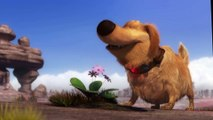 Disney Pixar Short Film - Dugs Special Mission (2009)