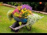 Garden Containers I Creative Garden Containers I Garden Container I Kreative Garten Container