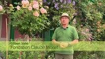 Jardin de Normandie : le Jardin de Claude Monet à Giverny