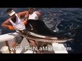 Sportfishing Trip In Quepos, Costa Rica
