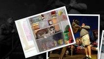 САМЫЕ СМЕШНЫЕ СОБАКИ 2015 - Лучшая Подборка #81 - Прикольные и Весёлые Собаки - ДО СЛЁЗ