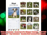 Whippet Calendar - Breed Specific Whippet Calendar - 2016 Wall calendars - Dog Calendars -