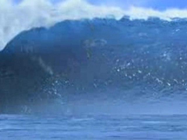 Surf's up vo trailer