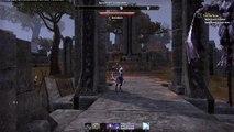 The Elder Scrolls Online [Let's Play] [German] Part 532 - Colovianische Hunde | Teso HD