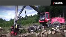 Waratah Harvesting Head on Komatsu Forest Machines