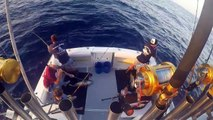 Tuna Fishing, San Diego, CA, Seaforth Sportfishing, Pacific Voyager
