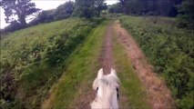 GoPro Horse Fall