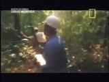 Obras Incríveis: Itaipu [Dublado] Documentário National Geographic