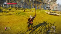 The Witcher 3: Wild Hunt Decapitation