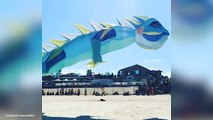 Hundreds of kites soar above Bondi for Festival Of The Wind