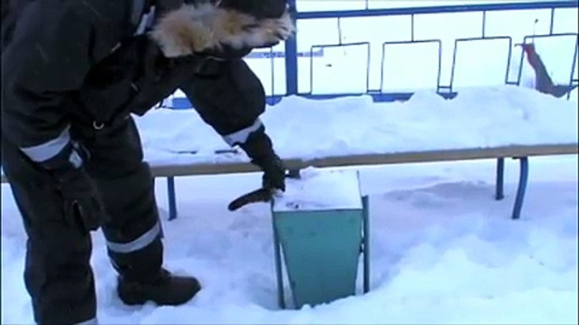 Barentsburg Wildlife