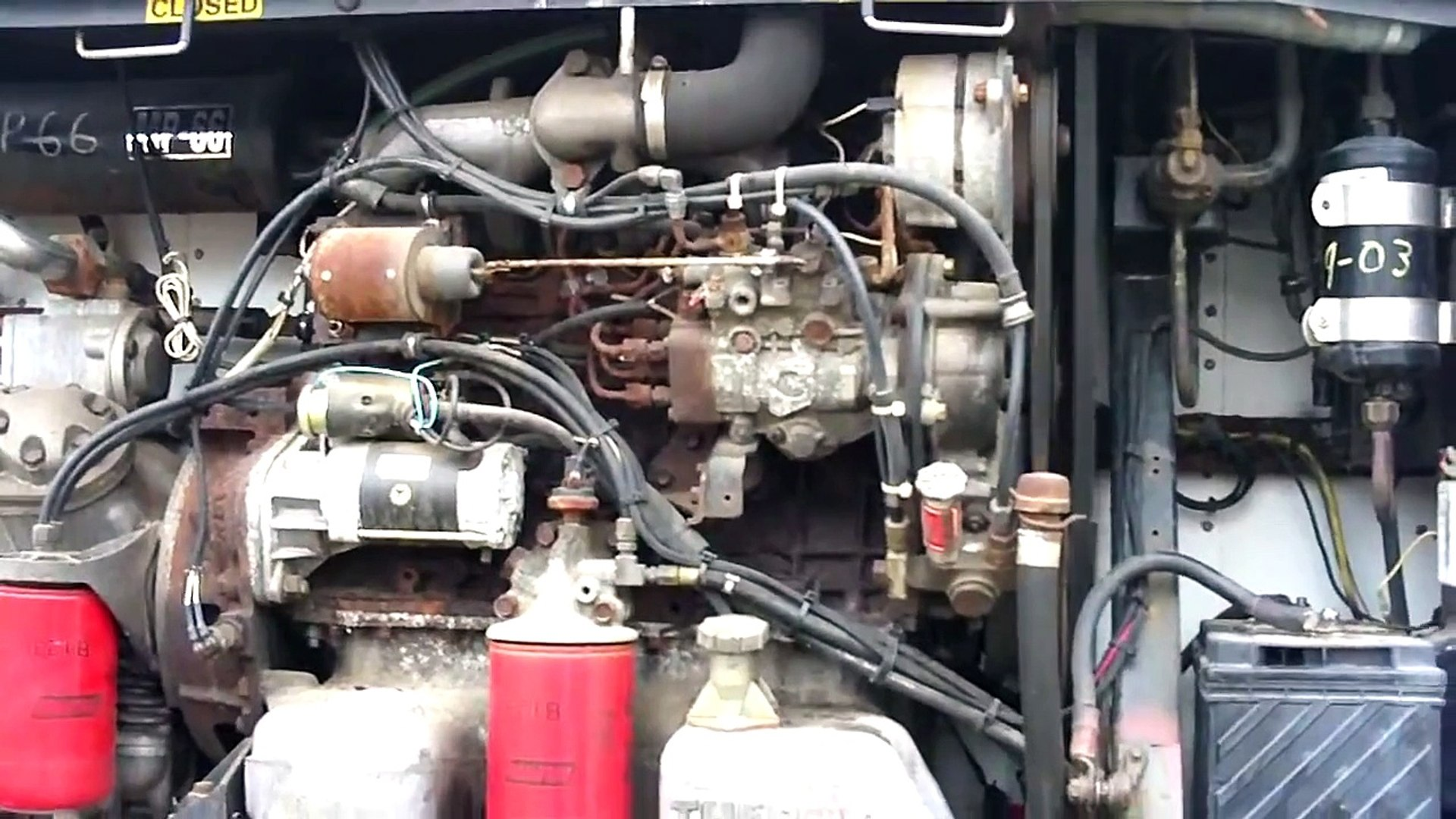 Thermo King / Isuzu D201 Diesel Cold start after 3 years sitting