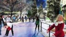 Chicago Park District Jan. 2014: Chicago Blackhawks Outdoor Ice Rinks