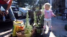 Lyla Helping Gan-Gan Pot the Rosemary
