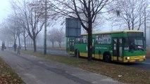 (14.11.11) Trolejbus i autobus w porannej mgle