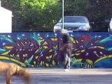KEEP SIX - GRAFFITI GRAFF