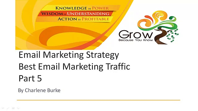 Email Marketing Strategy Best Email Marketing Traffic Part 5