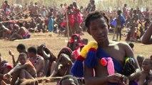 Swaziland: des femmes vierges participent à la Danse des Roseaux