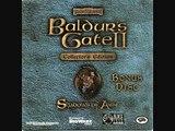 Baldur's Gate II  Shadows of Amn   Plains Battle 1 music