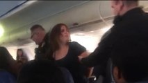 Woman removed from American Airlines after punching flight attendant
