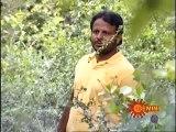 Agni Poolu 15-09-2015 | Gemini tv Agni Poolu 15-09-2015 | Geminitv Telugu Episode Agni Poolu 15-September-2015 Serial