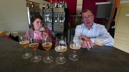 Six bières locales ( plus une bière de fabrication industrielle ) testées à l' aveugle aux caves du Dronckaert à Roncq