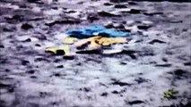 Des OVNI sur la LUNE selon des images de la NASA  - UFO na lua de acordo com imagens da NASA  -UFO on the MOON according to pictures from NASA