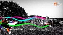 ACCROCHE-COEURS 2015 - Accroche-coeurs 2015 : les meilleurs moments