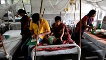 Delhi hospitals treat worst dengue outbreak in five years