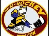 Roller hockey : mondial tcheque