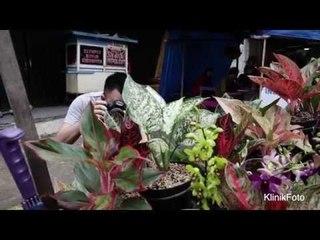 Makro di Pasar: KlinikFoto Episode 5
