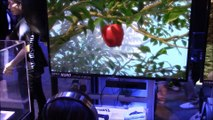 Gravity Rush Remastered - PS4 - Tokyo Game Show 2015