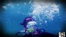 Diver Mauled in Squid Attack  Man-Eating Super Squid