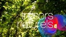 PASSION OUTREMER : Les trésors du patrimoine naturel des outre-mer