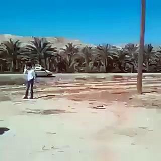 Amazing Motorcycling