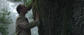 BDDP & Fils pour Coalition Climat 21 - «L'arbre» et «La mobilisation» - Octobre 2015