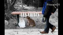 Daniil Kharms - Les chats - poésie russe pour enfants
