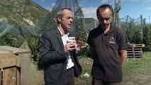 Alpes du Sud : Les arboriculteurs inquiets : Les exportations vis à vis de l'Algérie remises en cause