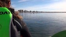 Une baleine soulève leur kayak !