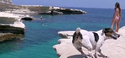 Diving Dog: Pet Jack Russell 'Titti' Jumps From Rocks With Her Owner [Full Episode]