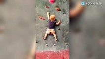 Ce bébé escalade encore mieux qu'il ne marche !