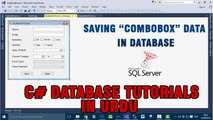 P(8) C# Database Tutorials In Urdu - How to save combobox data in Database