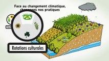 La nature : une solution au changement climatique en Île-de-France
