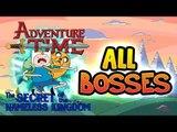 Adventure Time: The Secret of the Nameless Kingdom All Bosses | Boss Battles (PS3, X360)