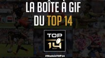 Coupe du Monde: la boîte à Gifs made in TOP 14