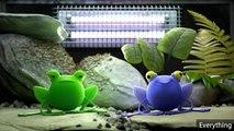 3D Demo Reel HD   Animation Demoreel 2015 - Louis Renard