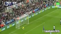Newcastle vs Chelsea 2-2 All Goals 2015 HD