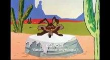 Best of Coyote und Roadrunner - Cartoon (english)